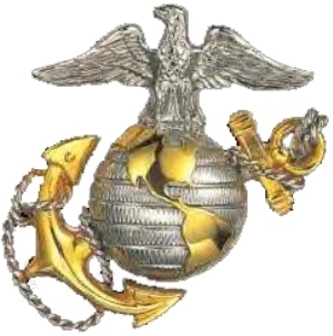 why i joined the marine corps essays Why your child should join the us army  i told my son that if he joined the army and went into the military police,  why did i join the army.